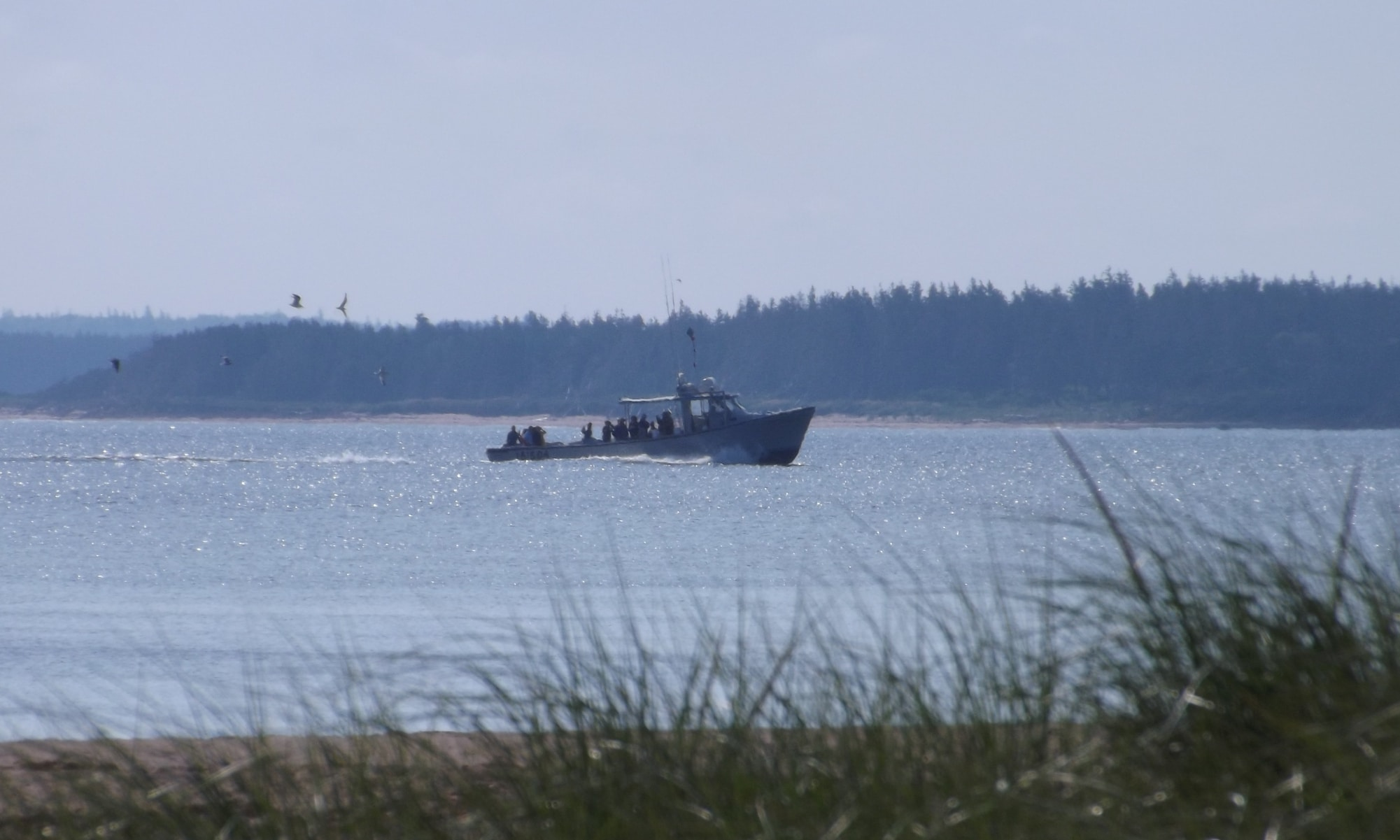 Fishing-Boat-at-North-Rustico-DSCF8352