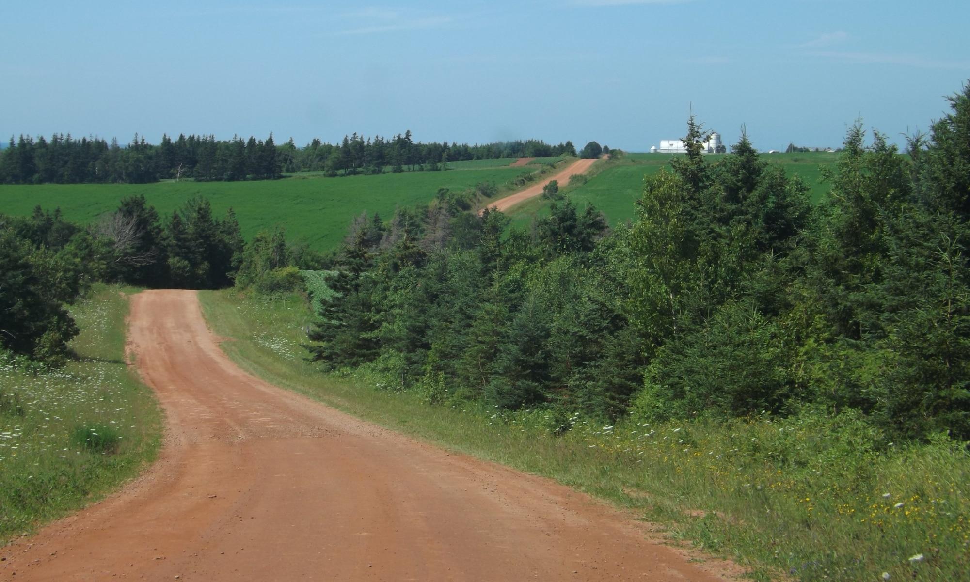 Red-Road-DSCF6397